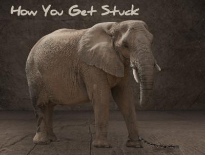 How you get stuck:  4 reasons we all get stuck, why and how.