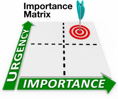 The Importance Matrix