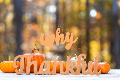 Why Thankful?  Practicing thankfulness and gratitude this Thanksgiving Day and every other day.